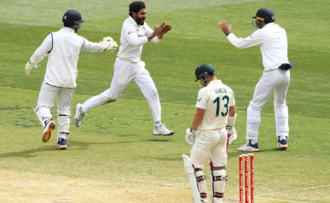 Team india celebrating a wicket